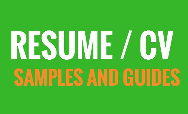 free CV examples  templates  creative  downloadable  fully editable   resume  CVs  resume  jobs