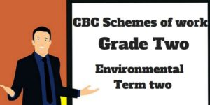 Environmental term 2, grade two, cbc schemes of work