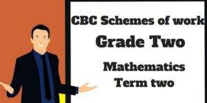 mathematics term 2, grade two, cbc schemes of work new