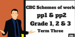 Environmental Grade 1 CBC schemes of work 2018, Term three, free pdf download